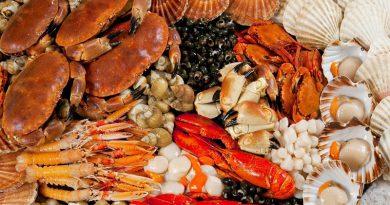 Du lịch Nha Trang trải nghiệm đặc sản nồng nàn hương vị biển.
